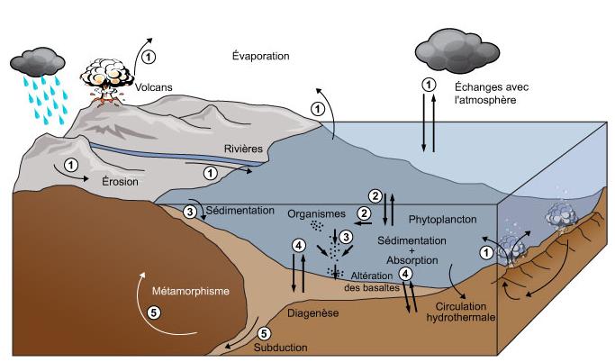 schéma du cycle géologique du carbone