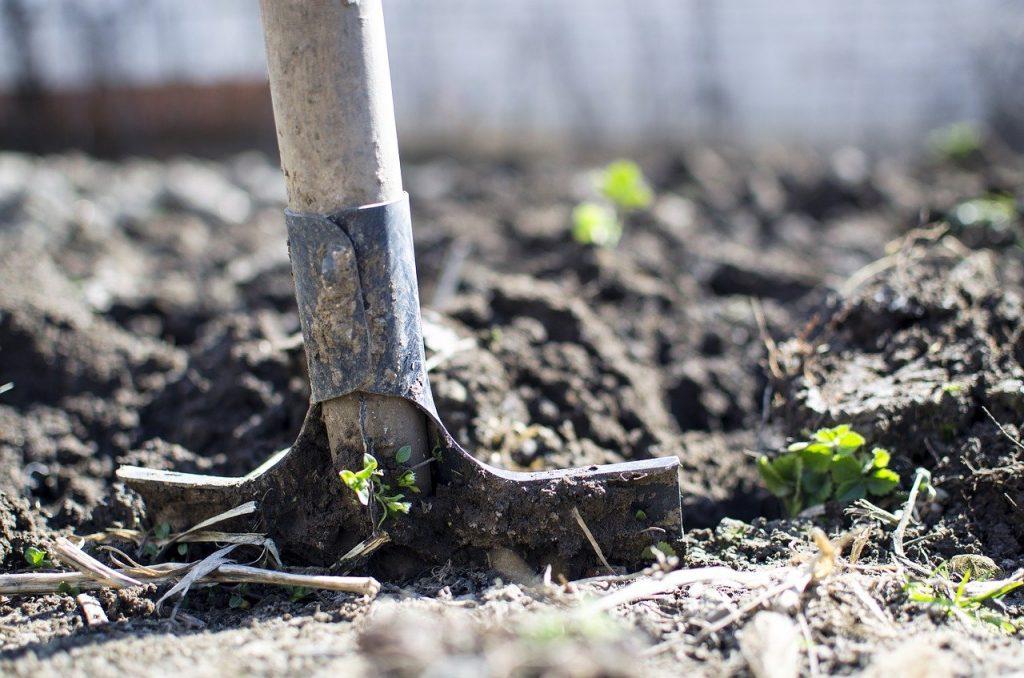 Recherche terrain agricole vérifier qualité sol
