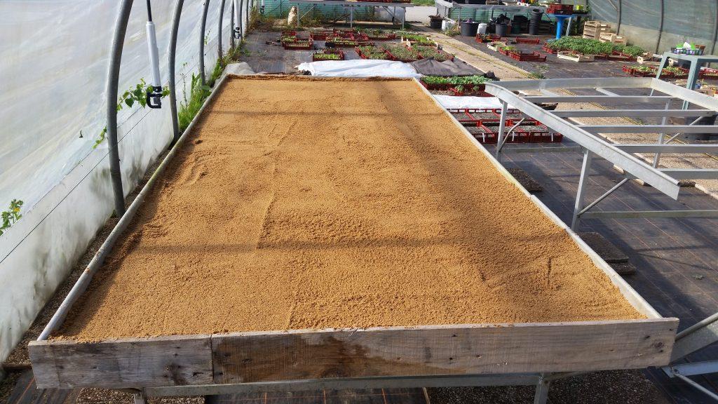 Table chauffante pour semis autoconstruction fabrication sable résistance câble nappe