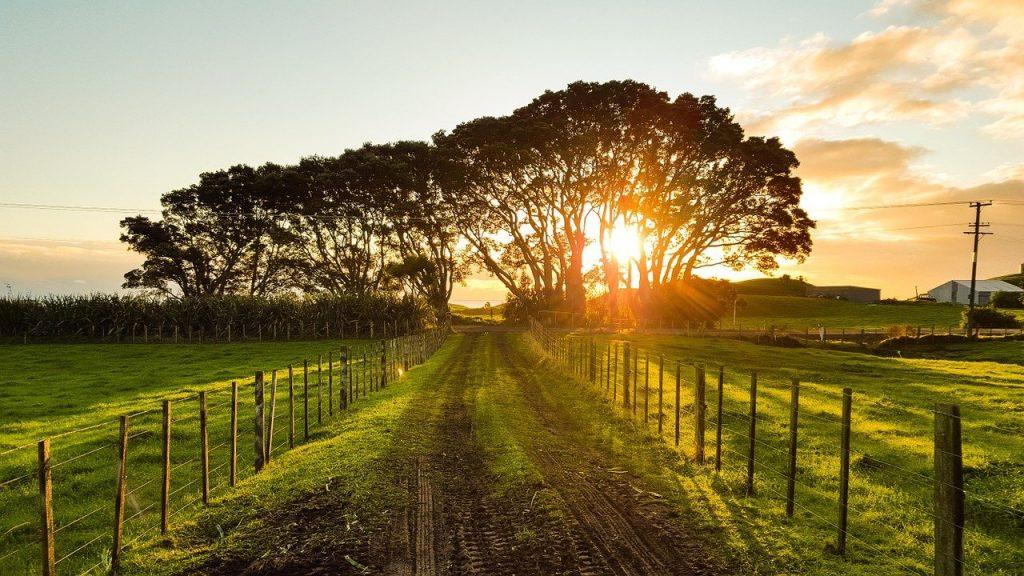 Recherche foncier agricole installation ferme